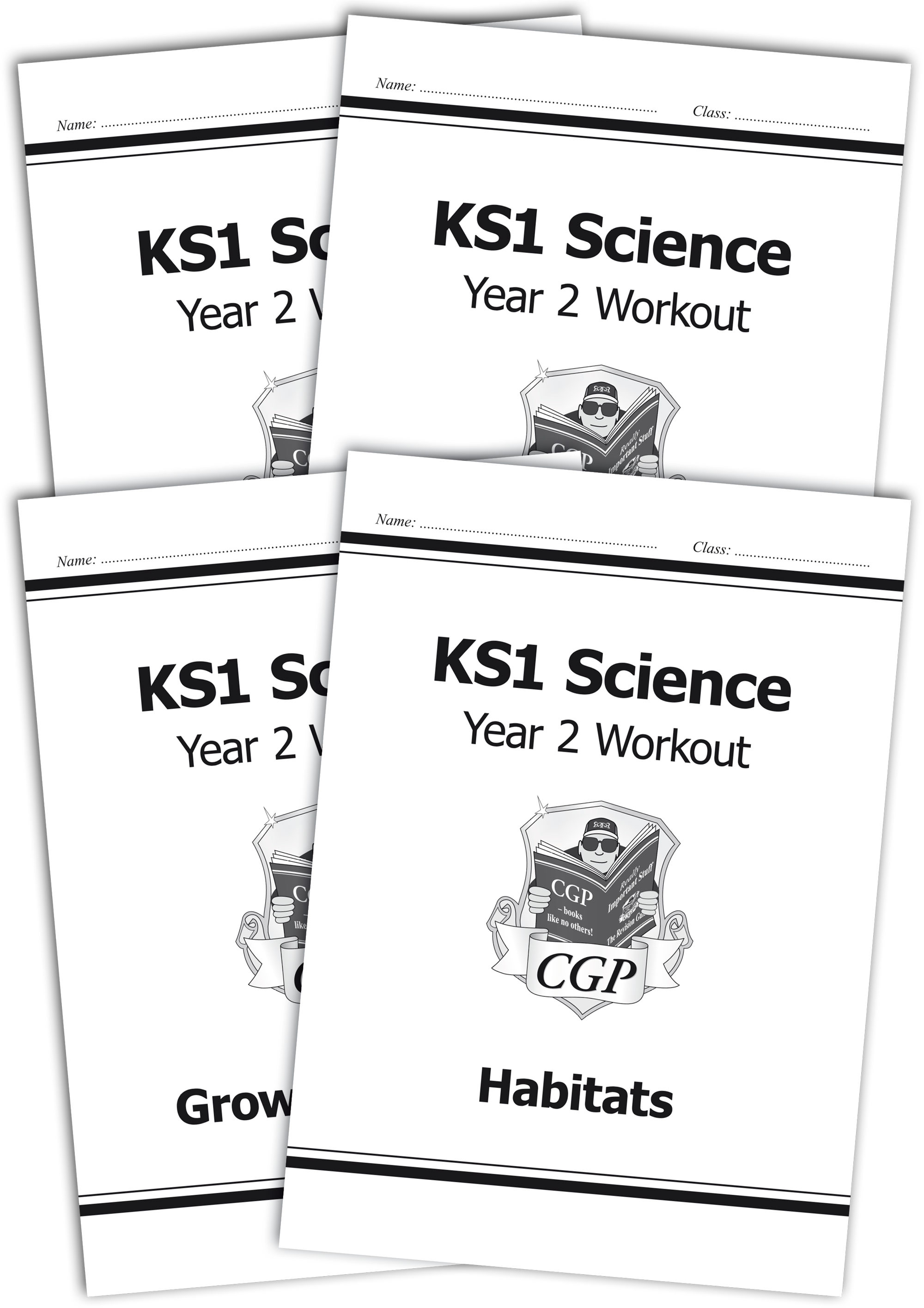 SWB211 - KS1 Science Year 2 Workout Bundle