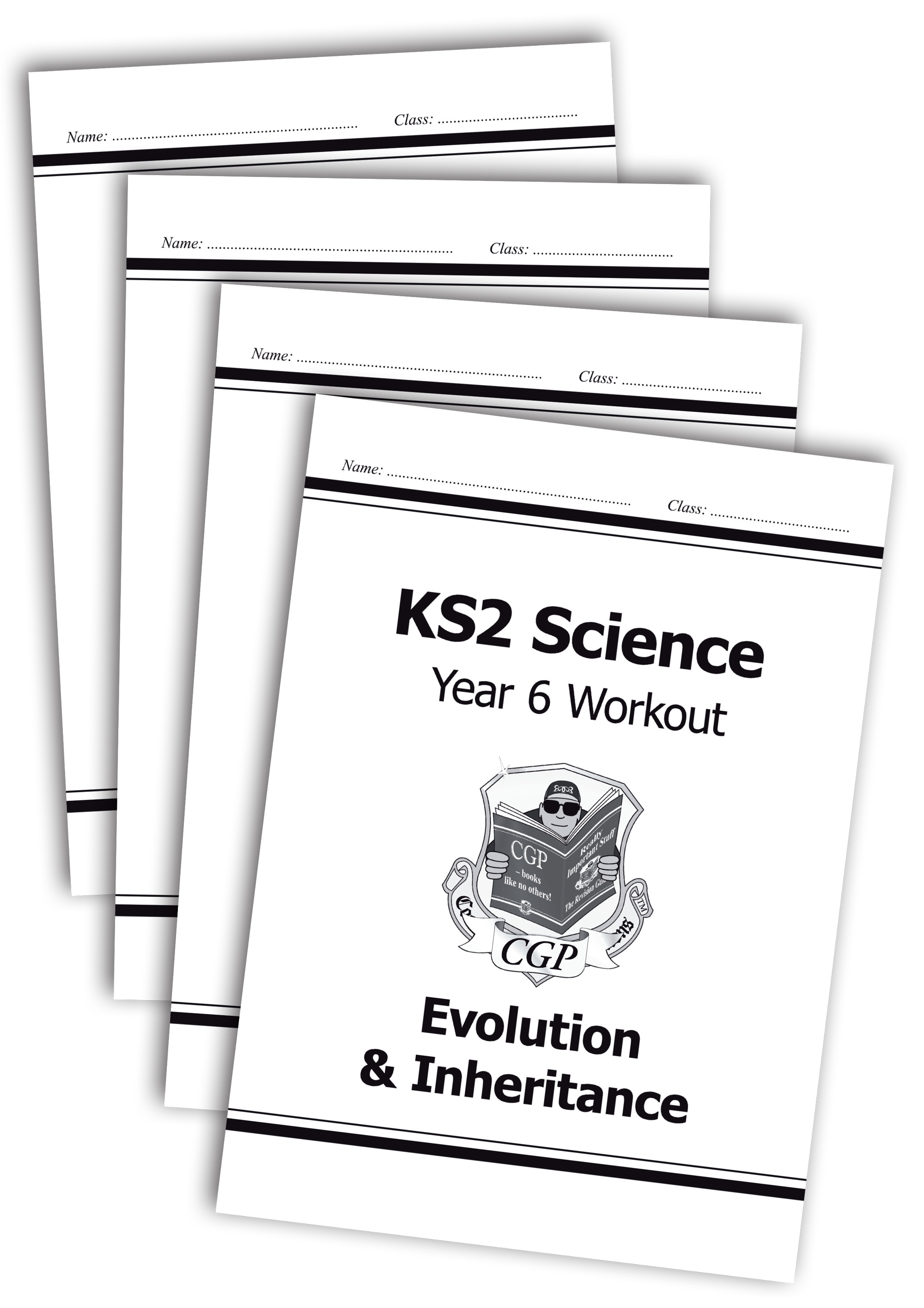 SWB622 - KS2 Science Year 6 Workout Bundle