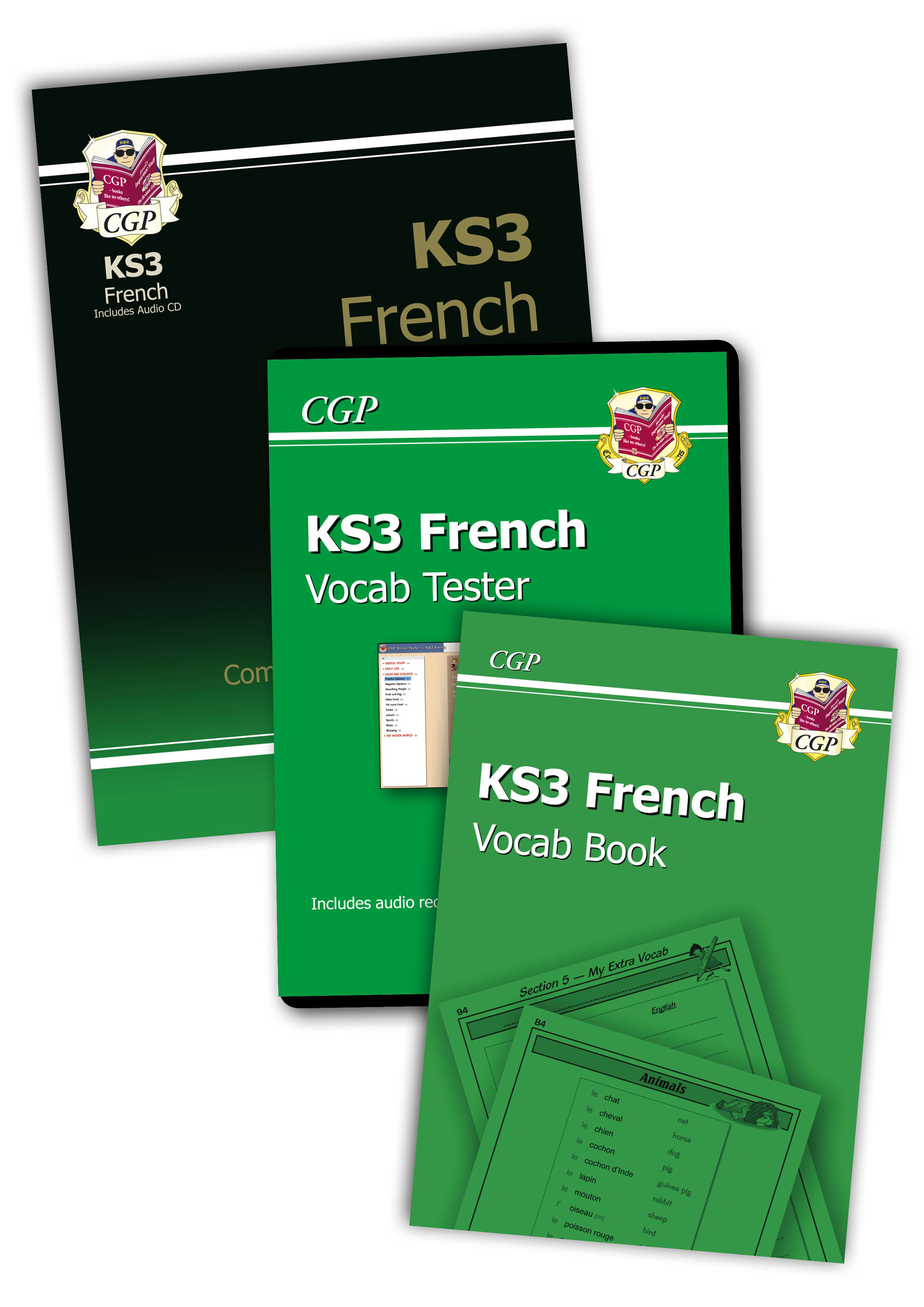 FHSB31 - KS3 French Bundle