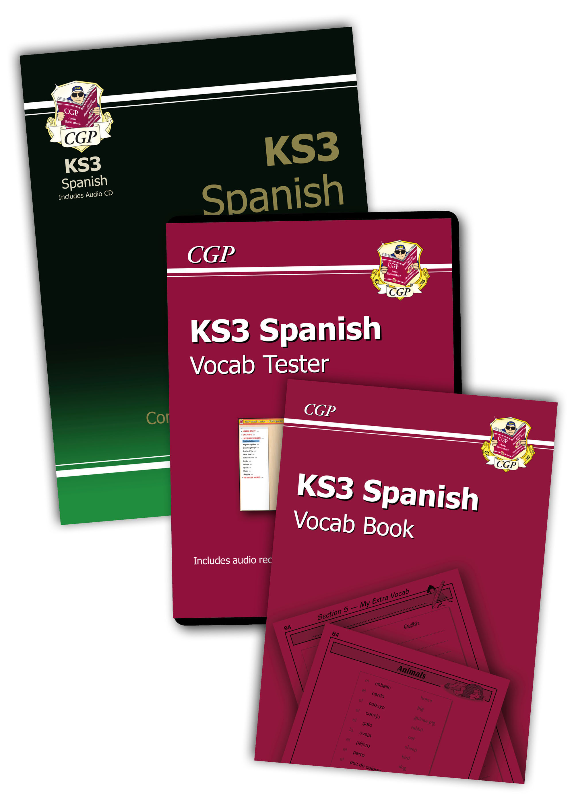 SPHSB31 - KS3 Spanish Bundle